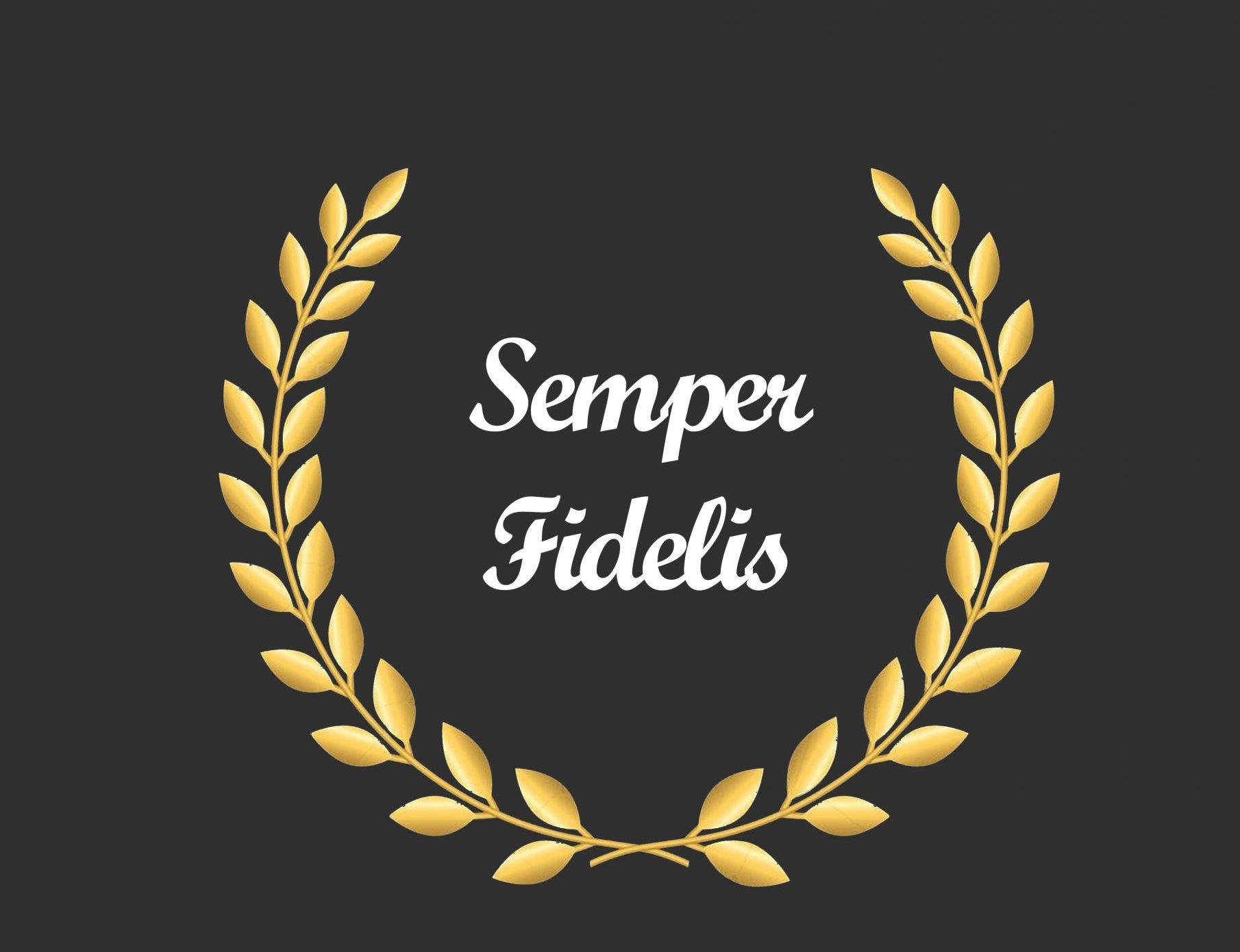 Semper Fields